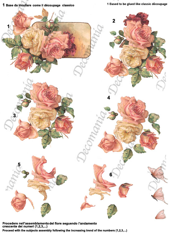 3D040 Rose colorate